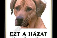 egyedi_kutyaharap_tabla_digitalis_nyomtatas