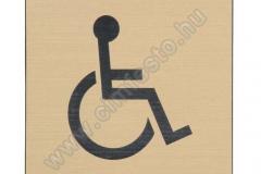 mozgasserult_toalett_tabla_vesett_muanyag